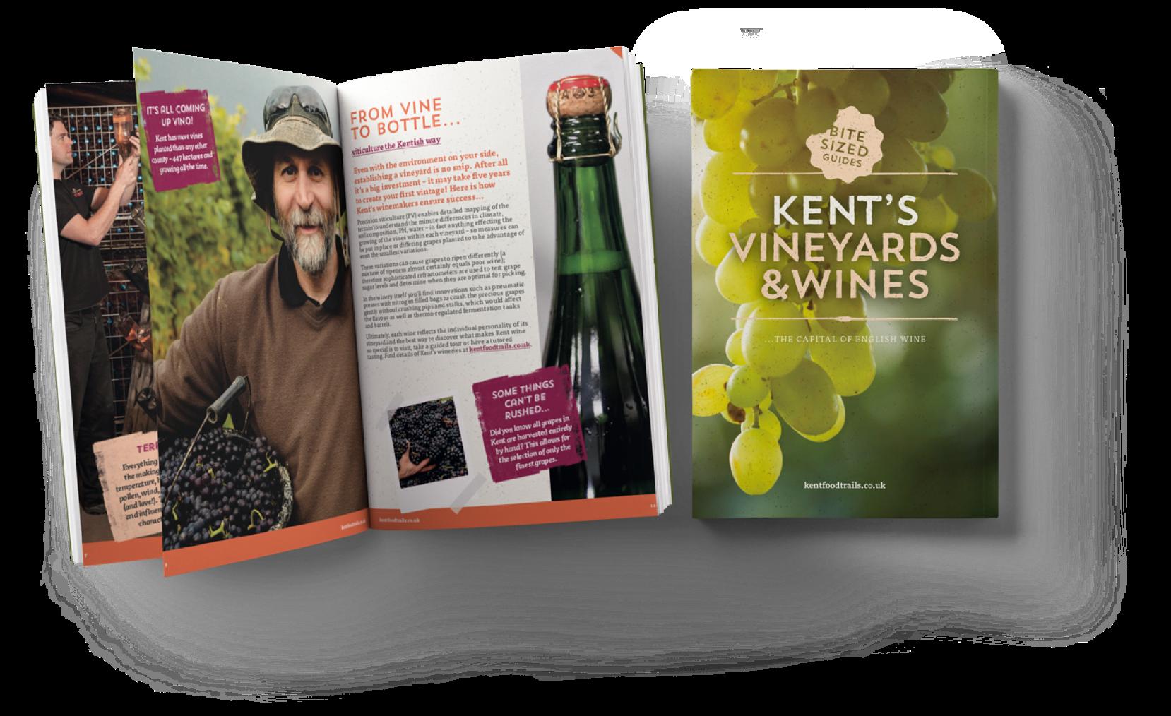 Wine Guide Mock